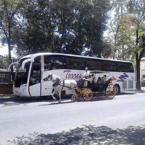 Autobuses en alquiler para grupos deportivos