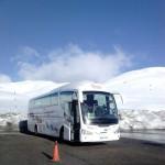 cuanto cuesta alquilar un autobus para una excursion en MAdrid
